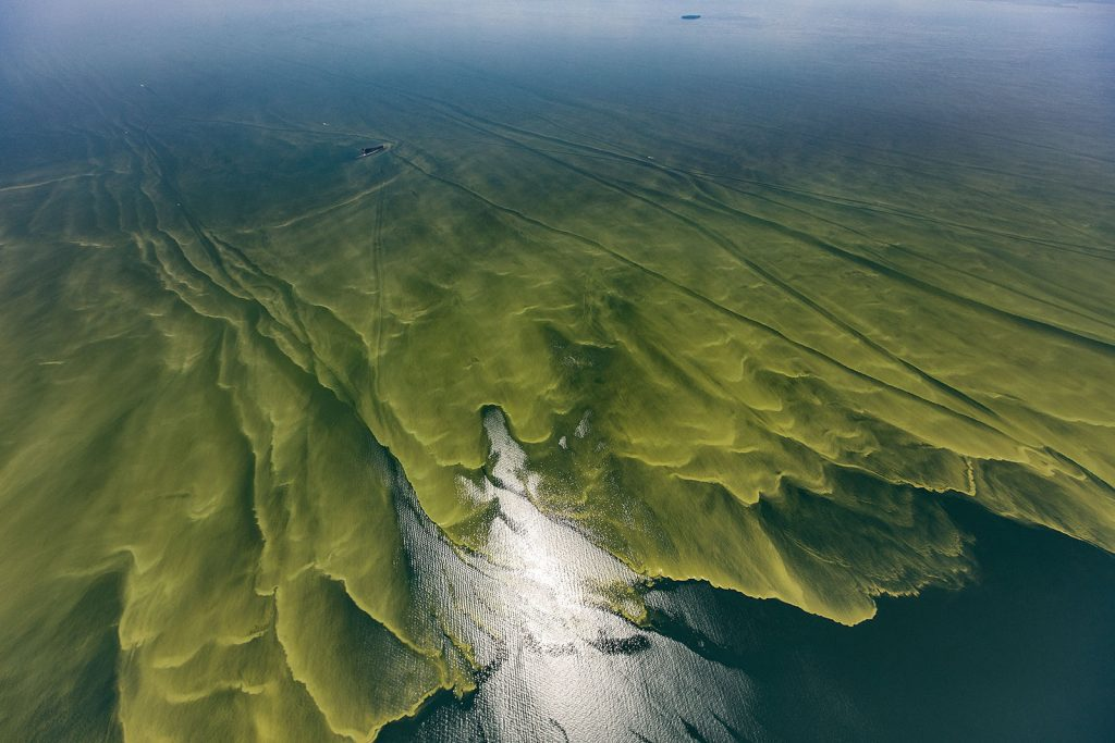 Lake Erie algal blooms August 2017 Photo Credit: Aerial Associates Photography, Inc. by Zachary Haslick