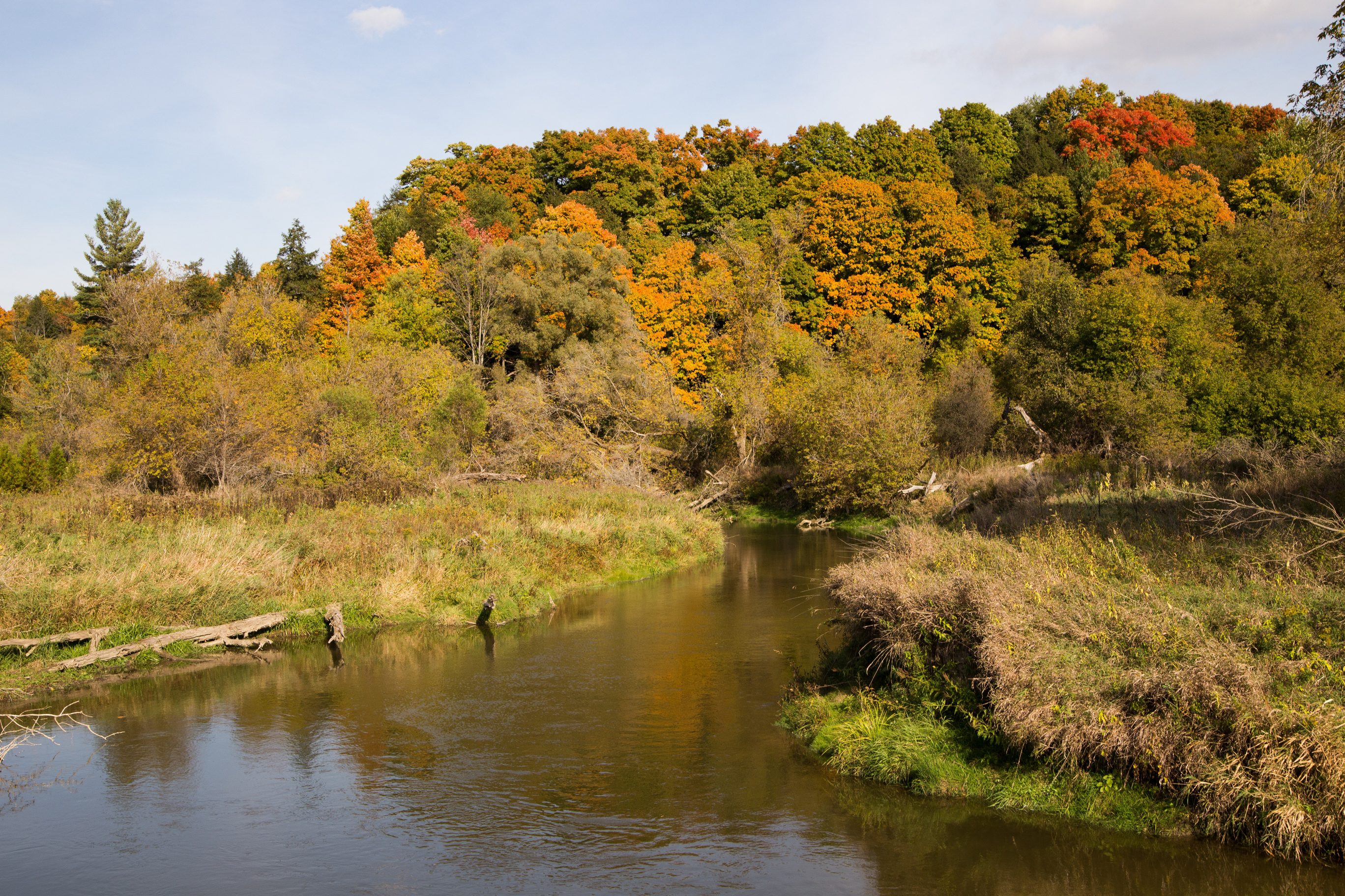 Highway 413 would degrade the Humber River